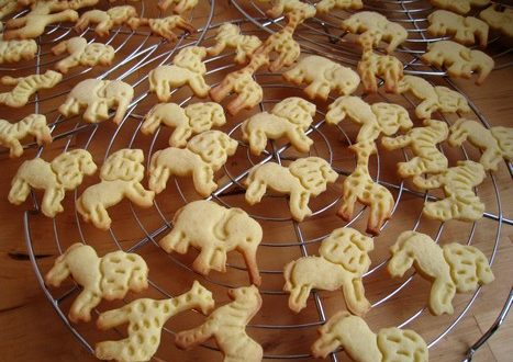 biscuits animaux3