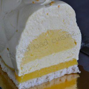buche mangue vanille3