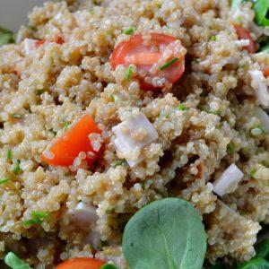 salade de quinoa a la dinde